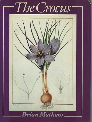 Image for The Crocus - a Revision of the Genus Crocus (Iridaceae)