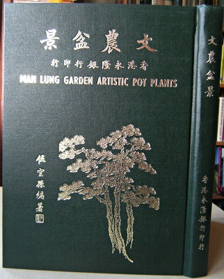 Image for Man Lung Garden Artistic Pot Plants