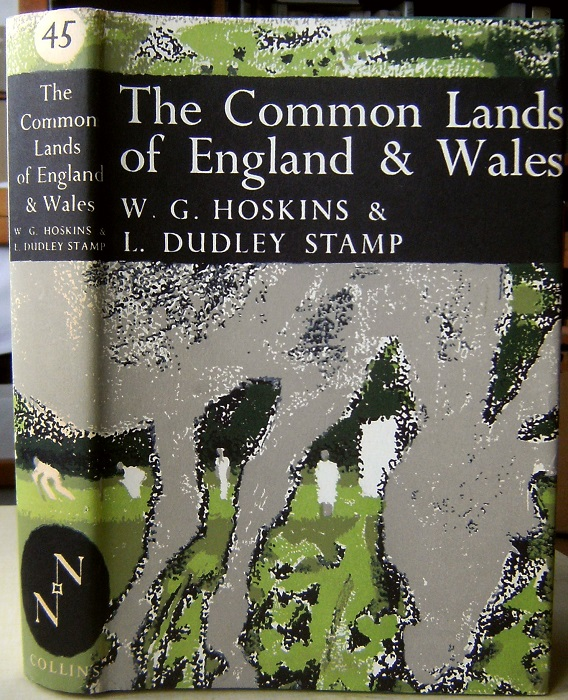 Image for The Common Lands of England and Wales