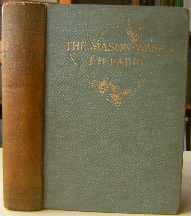 Image for The Mason-Wasps