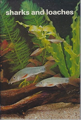 Image for Sharks and Loaches