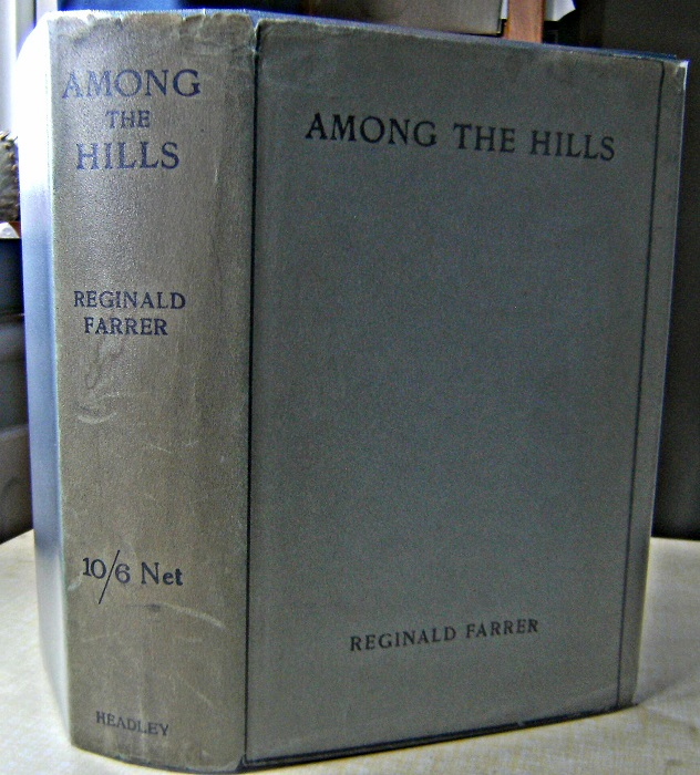 Image for Among the Hills  (with dustwrapper)