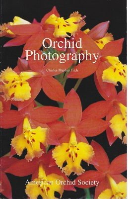 Image for Orchid Photography