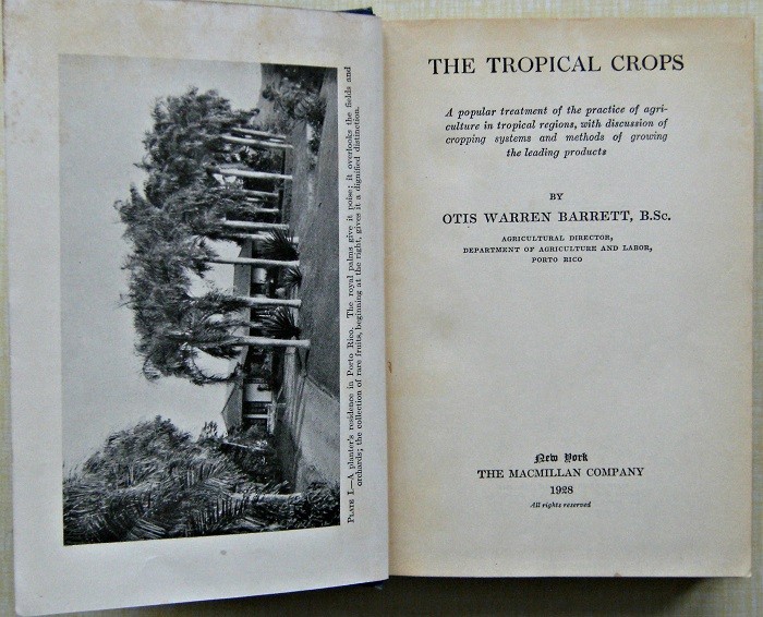 Image for The tropical crops : a popular treatment of the practice of agriculture in tropical regions, with discussion of cropping systems and methods of growing the leading products