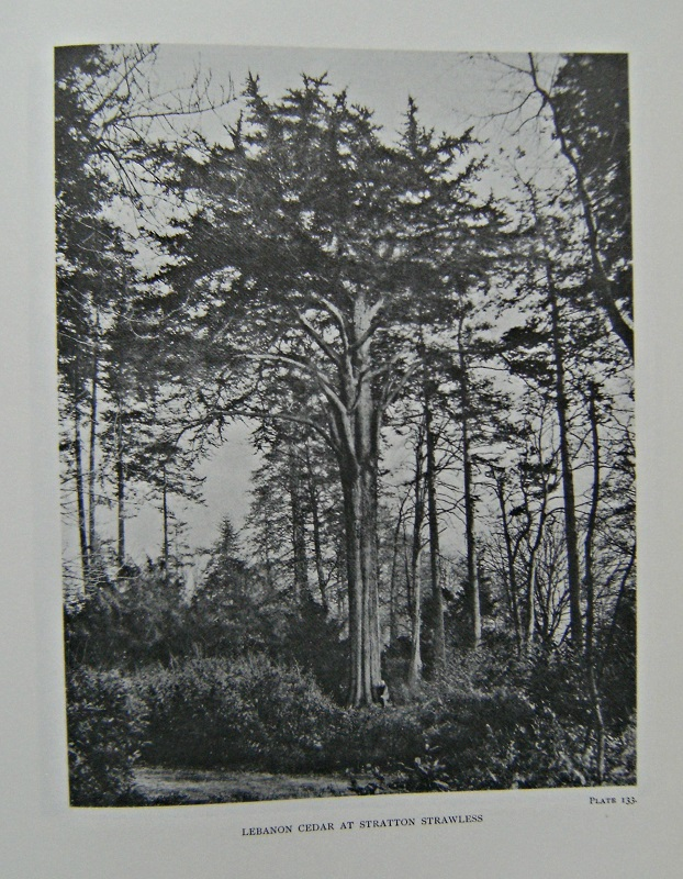 Image for The Trees of Great and Ireland.  [7 volumes - complete set]