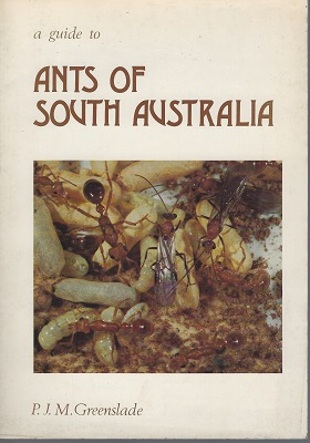 Image for A Guide to Ants of South Australia