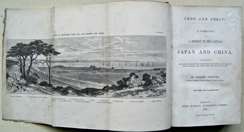 Image for Yedo and Peking:  A Narrative of a Journey to the Capitals of Japan and China. With Notices of the natural productions, agriculture, horticulture, and trade of those countries, and other things met with by the way