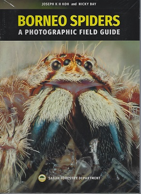 Image for Borneo Spiders - a Photographic Field Guide