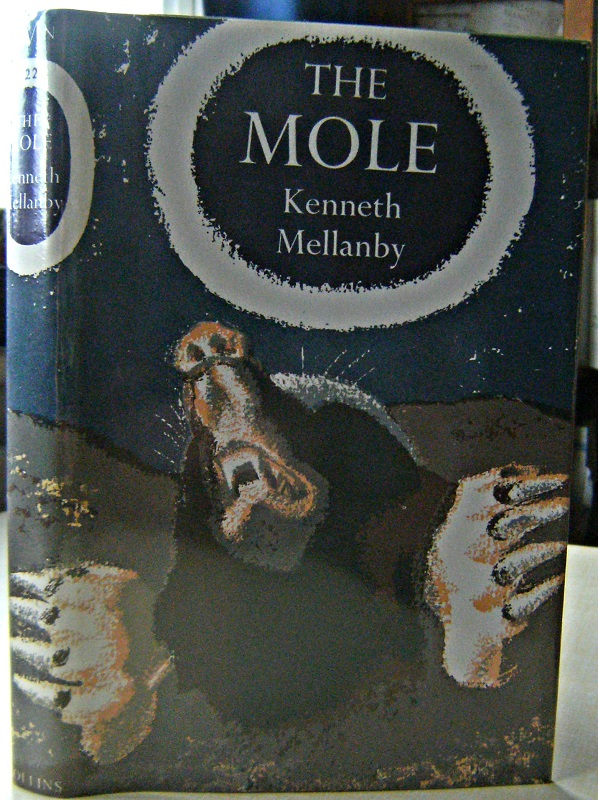 Image for The Mole
