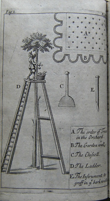 Image for Plain and Full Instructions to Raise all Sorts of Fruit-trees in England. Second edition, revised and enlarged in many places; together with an addition of two intire chapters of Greens and Green-houses