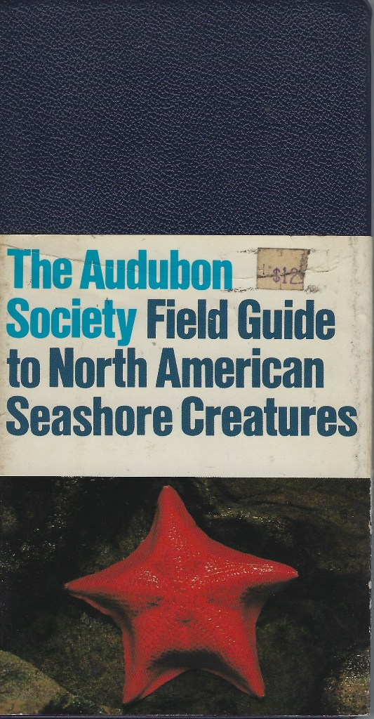 Image for The Audubon Society Field Guide to North American Seashore Creatures