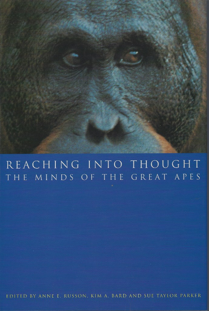 Image for Reaching Into Thought - the minds of the great apes