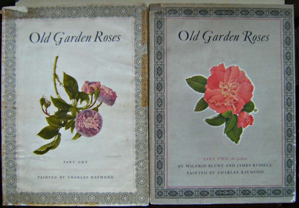 Image for Old Garden Roses - Two volumes