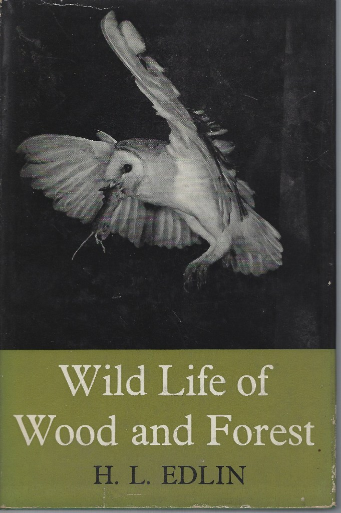 Image for Wild Life of Wood and Forest