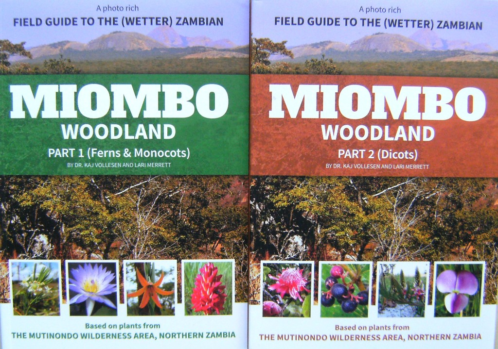 Image for A Photo Rich Field Guide to the Wetter Zambian Miombo Woodlands. Part 1 - Ferns and Monocotyledons; Part 2 - Dicotyledons