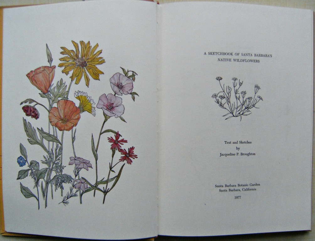 Image for A Sketchbook of Santa Barbara's Native Wildflowers
